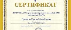 Сертификат участника вебинара Мозаичный парк