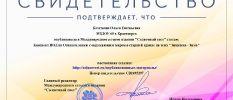 Свидетельство о публикации статьи Кочеткова
